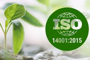 TƯ VẤN CHỨNG NHẬN ISO 14001:2015 TIÊU CHUẨN QUỐC TẾ – HỆ THỐNG QUẢN LÝ MÔI TRƯỜNG