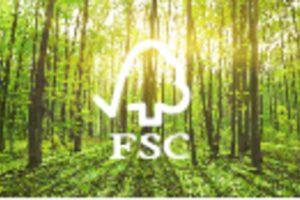 TƯ VẤN CHỨNG NHẬN FSC – TIÊU CHUẨN RỪNG BỀN VỮNG