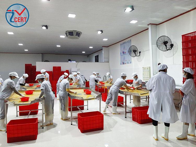 Icert Global tư vấn chứng nhận HACCP tại Công ty Chanh Vuông BH