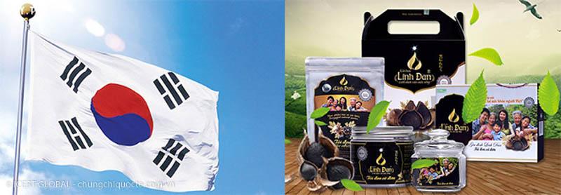 tư vấn chứng nhận iso 22000 - icert global sản phẩm tỏi đen linh đan xuất khẩu hàn quốc