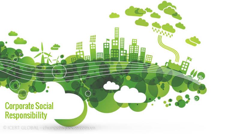 dịch vụ tư vấn chứng nhận quốc tế BSCI - icert global