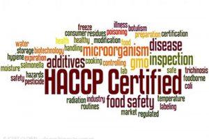 TƯ VẤN, ĐÀO TẠO ĐẠT CHỨNG NHẬN HACCP