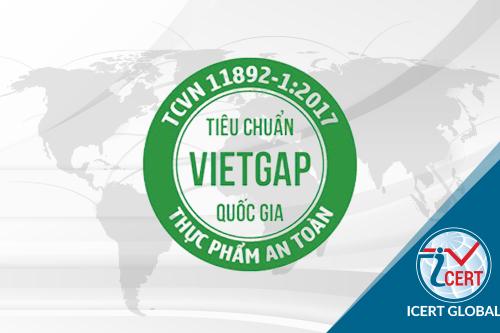Icert Global tư vấn chứng nhận VietGAP trồng trọt