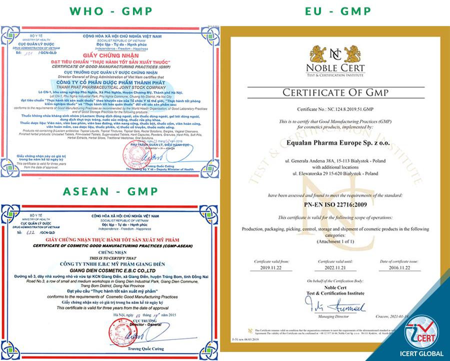 Các mẫu chứng nhận GMP thường gặp